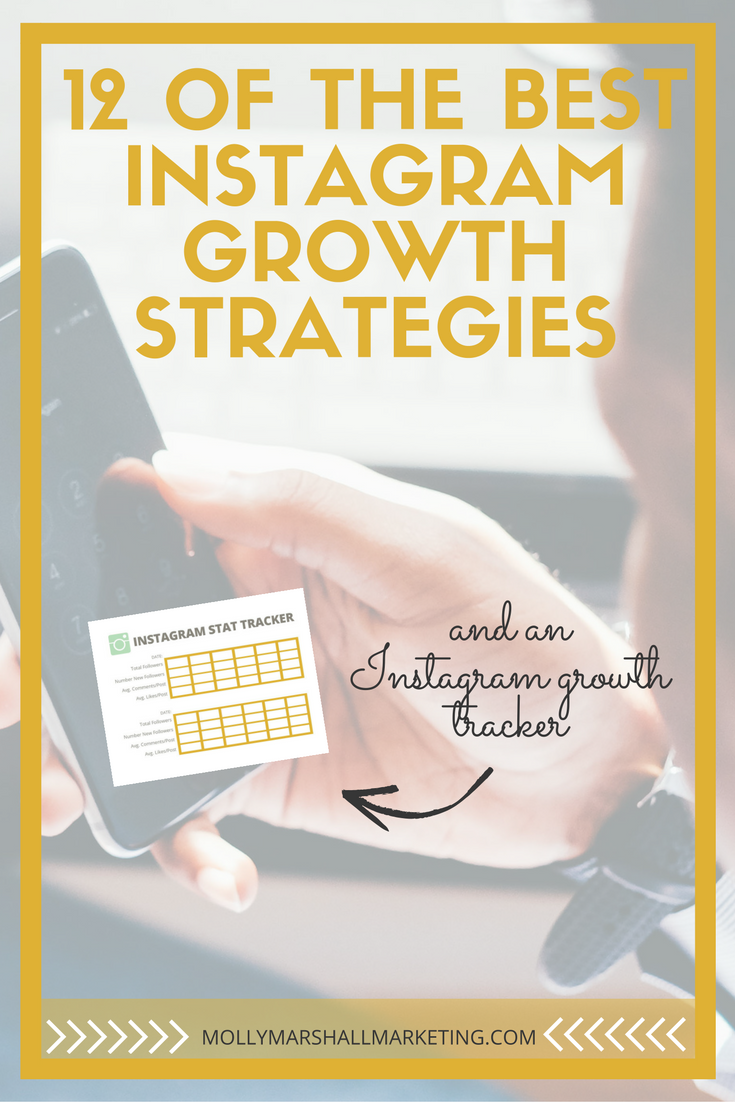 If you didn't get to participate in my 12 day Instagram growth challenge, don't worry! I've compiled all the tips and challenges here to give you a comprehensive guide to the best Instagram growth strategies! Click to read or pin for later.