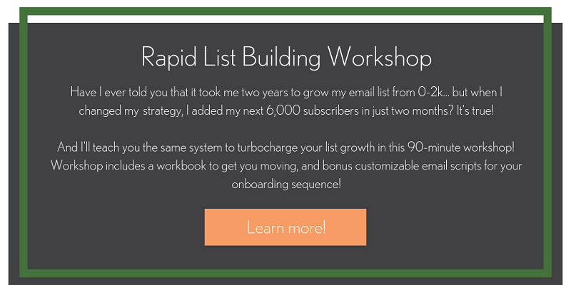 Learn more about my rapid list building workshop