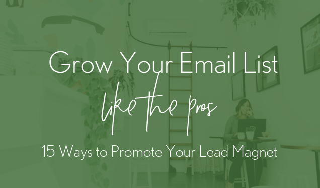 Grow Your Email List Like the Pros: 15 Ways to Promote Your Lead Magnet